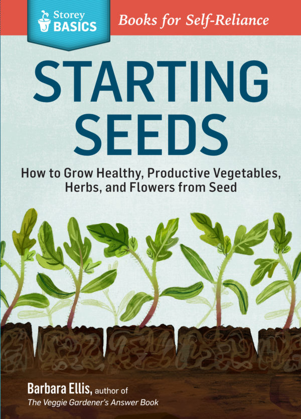 Starting Seeds - St. Clare Heirloom Seeds