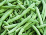Bean, Bush Snap - Strike Bean - St. Clare Heirloom Seeds