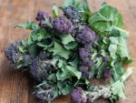 Purple Sprouting Broccoli - St. Clare Heirloom Seeds