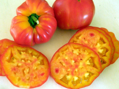 Tomato, Orange and Yellow - Old German - St. Clare Heirloom Seeds