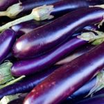 Long Purple Eggplant - St. Clare Heirloom Seeds