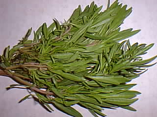 Herb, Annual - Summer Savory - St. Clare Heirloom Seeds