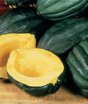 Squash, Winter - Table Queen Acorn Bush - St. Clare Heirloom Seeds