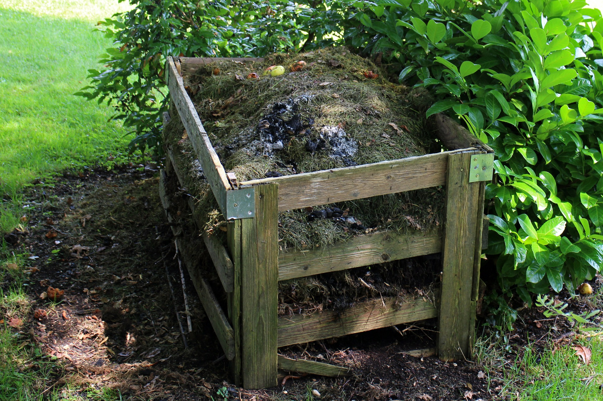 Composting Tips for Beginners - St. Clare Heirloom Seeds